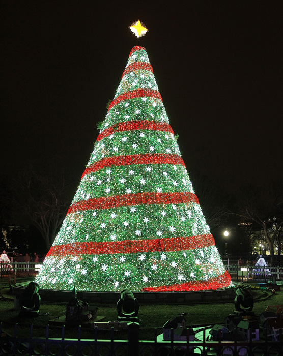 10 Most Beautiful Christmas Trees In The World Travelinggo
